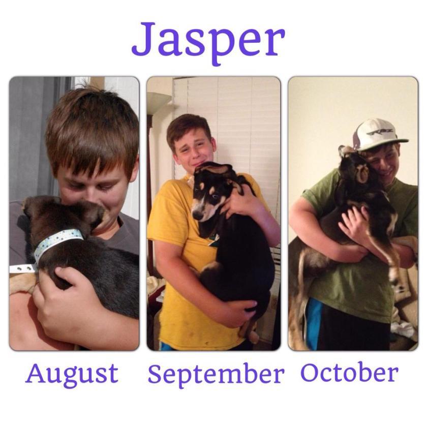 Jasper months